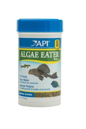 API Algae Eater Wafers