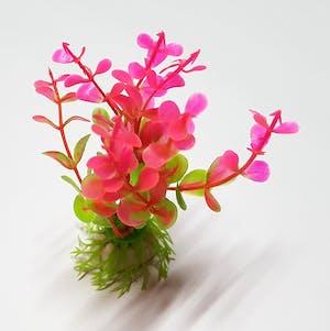 Decorative Aquarium Plant DAP52408