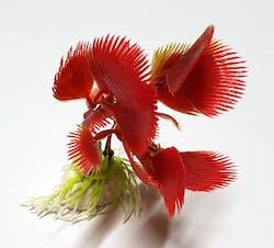 Decorative Aquarium Plant DAP52413