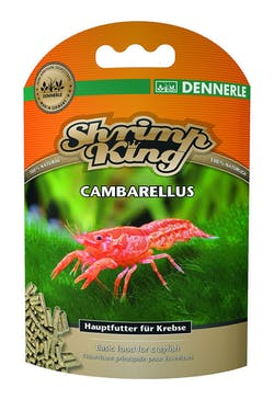 DENNERLE Shrimp King Cambarellus