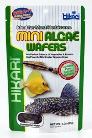 Hikari Algae Wafers Mini