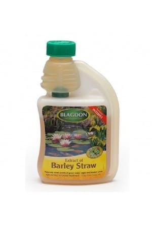 Blagdon Extract of Barley Straw
