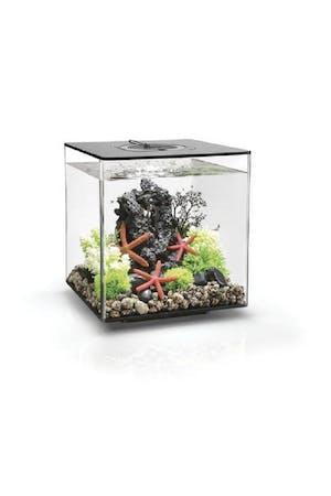 biOrb Cube 30 MCR