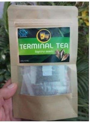 UHT Indian Almond Leaves Tea (Terminal Tea)