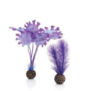 biOrb Kelp Set S Purple