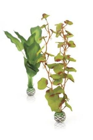 biOrb Silk Plant Set M Green