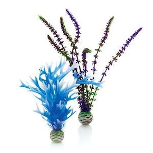 biOrb Plant Set M Blue & Purple