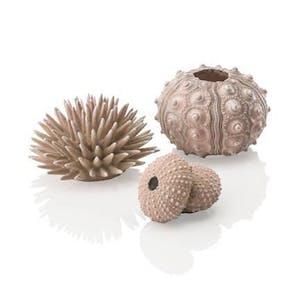biOrb Sea Urchins set natural