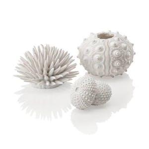 biOrb Sea Urchins set white