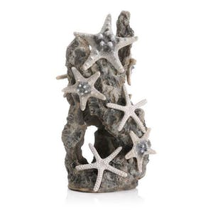 biOrb Sea Star Rock Ornament