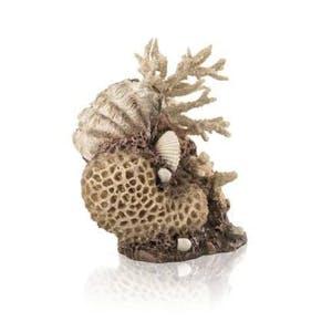 biOrb coral shells ornament natural