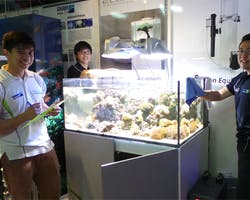 Reef Systems - Professional Maintenance Services