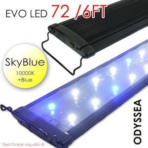 ODYSSEA EVO Led 72 156W Skyblue (10000K+blue)