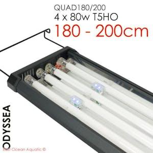 ODYSSEA QUAD 180/200 180cm T5HO 80W x4