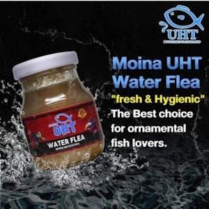 UHT Water Flea 75g (MONIA)