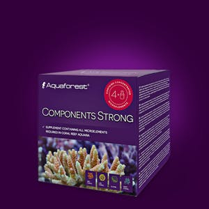 AQUAFOREST COMPONENTS STRONG 4 IN 1 BOX