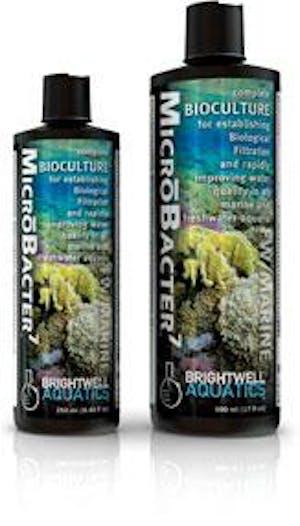 BRIGHTWELL AQUATICS MICROBACTER 7 2000ML