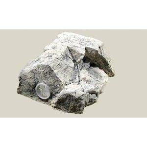 BACK TO NATURE MODULES AQUARIUM MODUL(WHITE LIMESTONE T)
