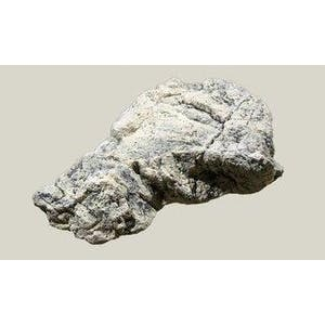 BACK TO NATURE MODULES AQUARIUM MODUL(WHITE LIMESTONE L)