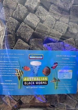 AUSTRALIAN BLACKWORMS DRIED CUBE 50GRAMS