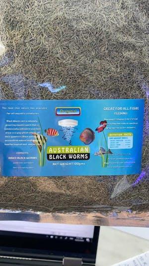 AUSTRALIAN BLACKWORMS DRIED LOOSE 100GRAMS