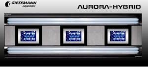 AURORA HYBRID 4 X 54 WATT + 3 X 85W LED 1200 MM