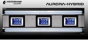 AURORA HYBRID 4 X 39 WATT + 2 X 85W LED 900 MM