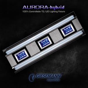 AURORA HYBRID 4 X 24 WATT + 1 X 85W LED 600 MM