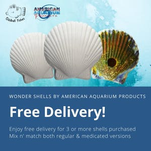 American Aquarium Product (AAP) Wonder Shell Combo Pack of 3