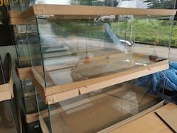 4 feet Glass Tank