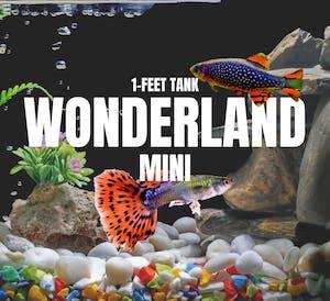 Adventure Pack - Wonderland Mini Set