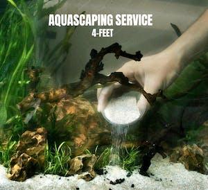 FishyHub Aquascaping Service for 4 feet tanks
