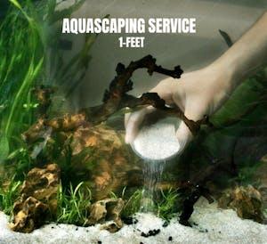 FishyHub Complete Tank Setup/ Aquascape for 1 feet tanks