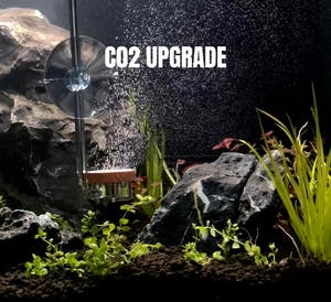CO2 System Upgrade