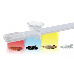 AP- Aqua Sparkling LED Ultra Slim Lamp