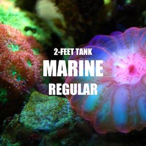 Adventure Pack - Marine 2-Feet Set