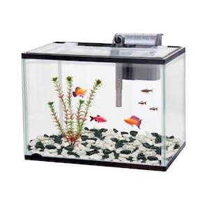 Classica Aquarium Starter Kit Fish Tank