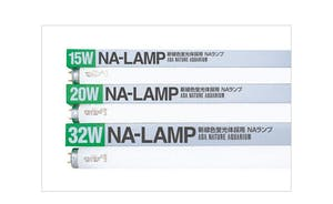 NA-LAMP