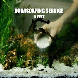 FishyHub Aquascaping Service for 5 feet tanks