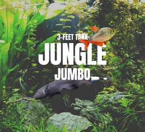 Adventure Pack - Jungle 3-Feet Set