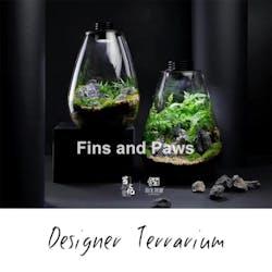 [Terra] Terrarium complete with LED Light